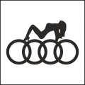 Audi girl2