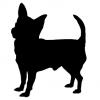 """Куче """"Chiwawa"""""""