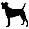 """Куче """"Jack Russell"""""""