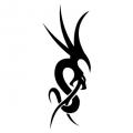 Дракон #14