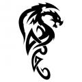 Дракон #05