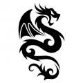 Дракон #06