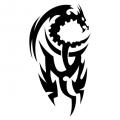Дракон #08