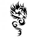 Дракон #09