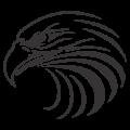 Глава на орел #1